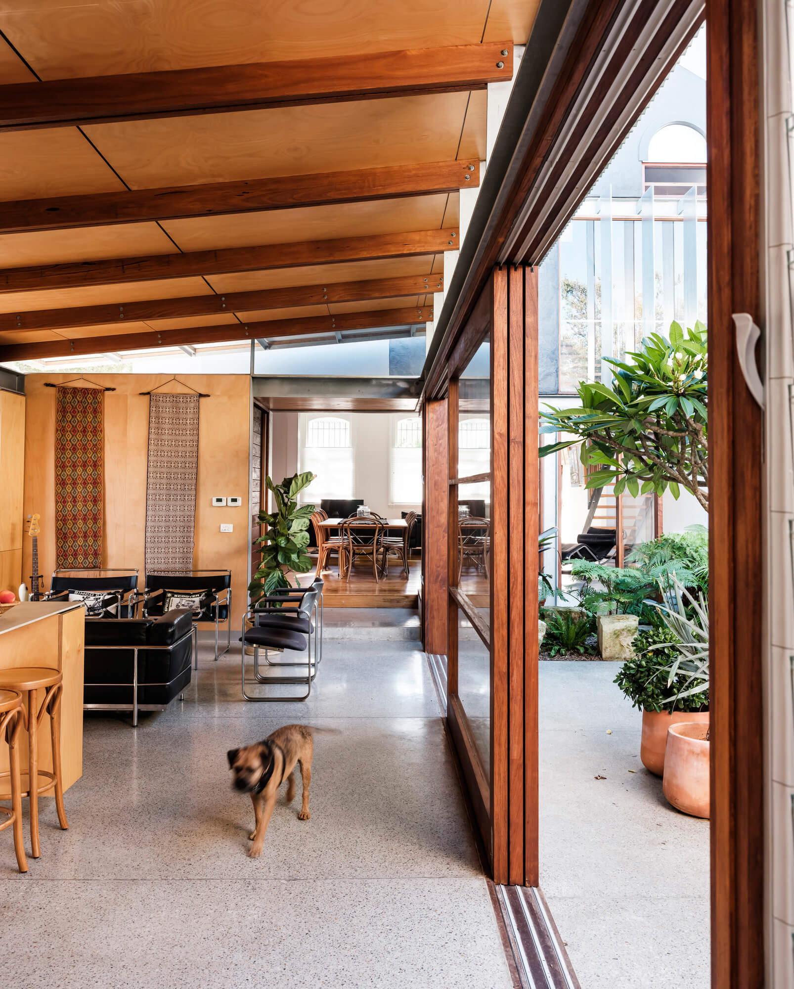 The seamless connect between the courtyard and the interior | Courtyard House by COX Architecture | STIRworld