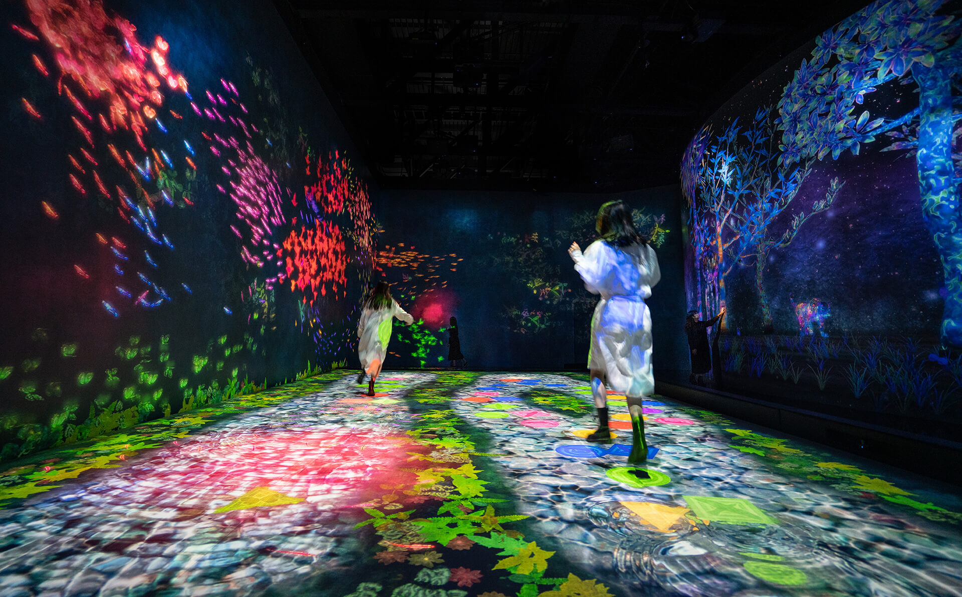teamLab, Hopscotch for Geniuses: Bounce on the Water | teamLab SuperNature Macao | teamLab | STIRworld
