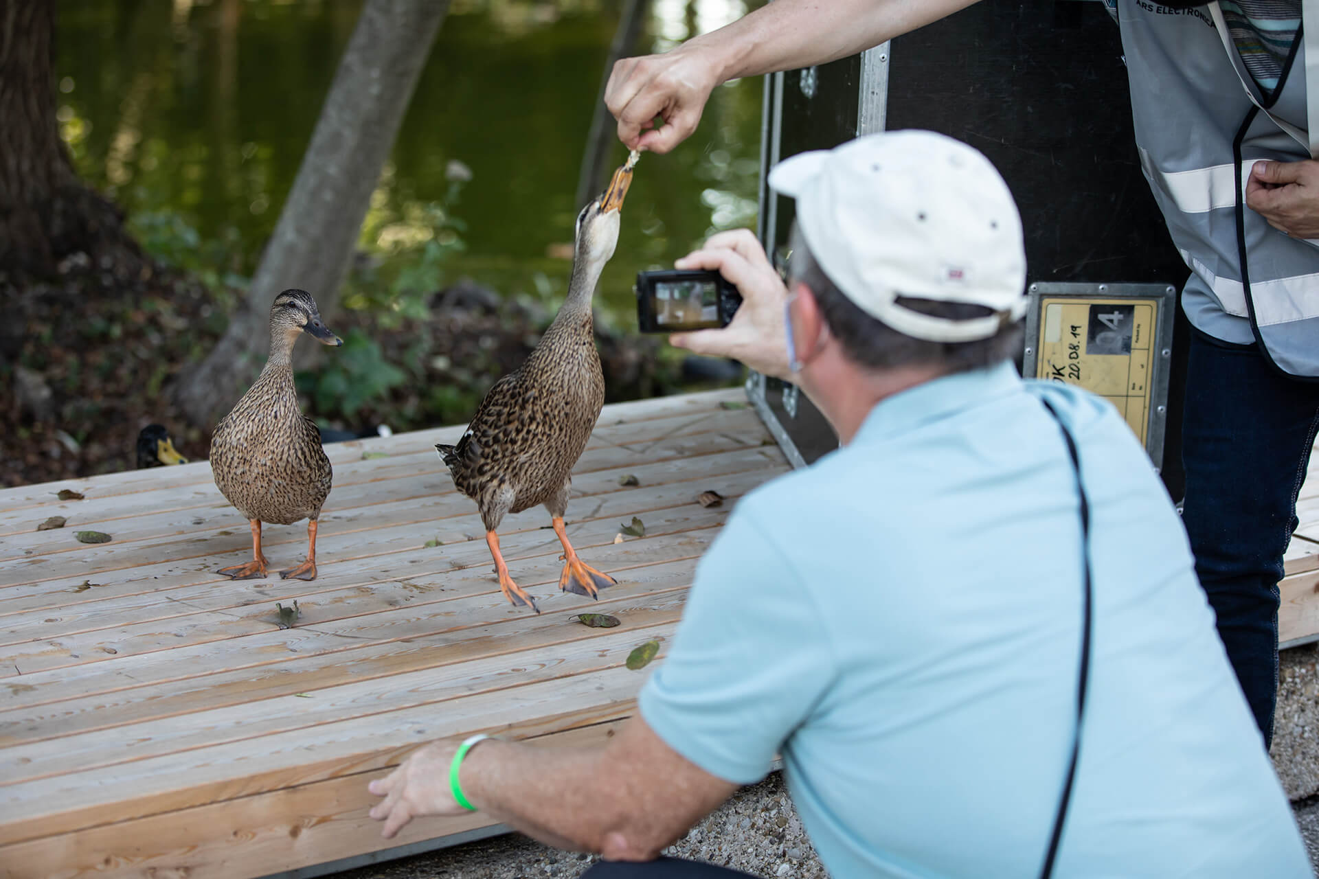 Visitors feeding ducks at the JKU Campus | In Kepler's Gardens | Ars Electronica | STIRworld