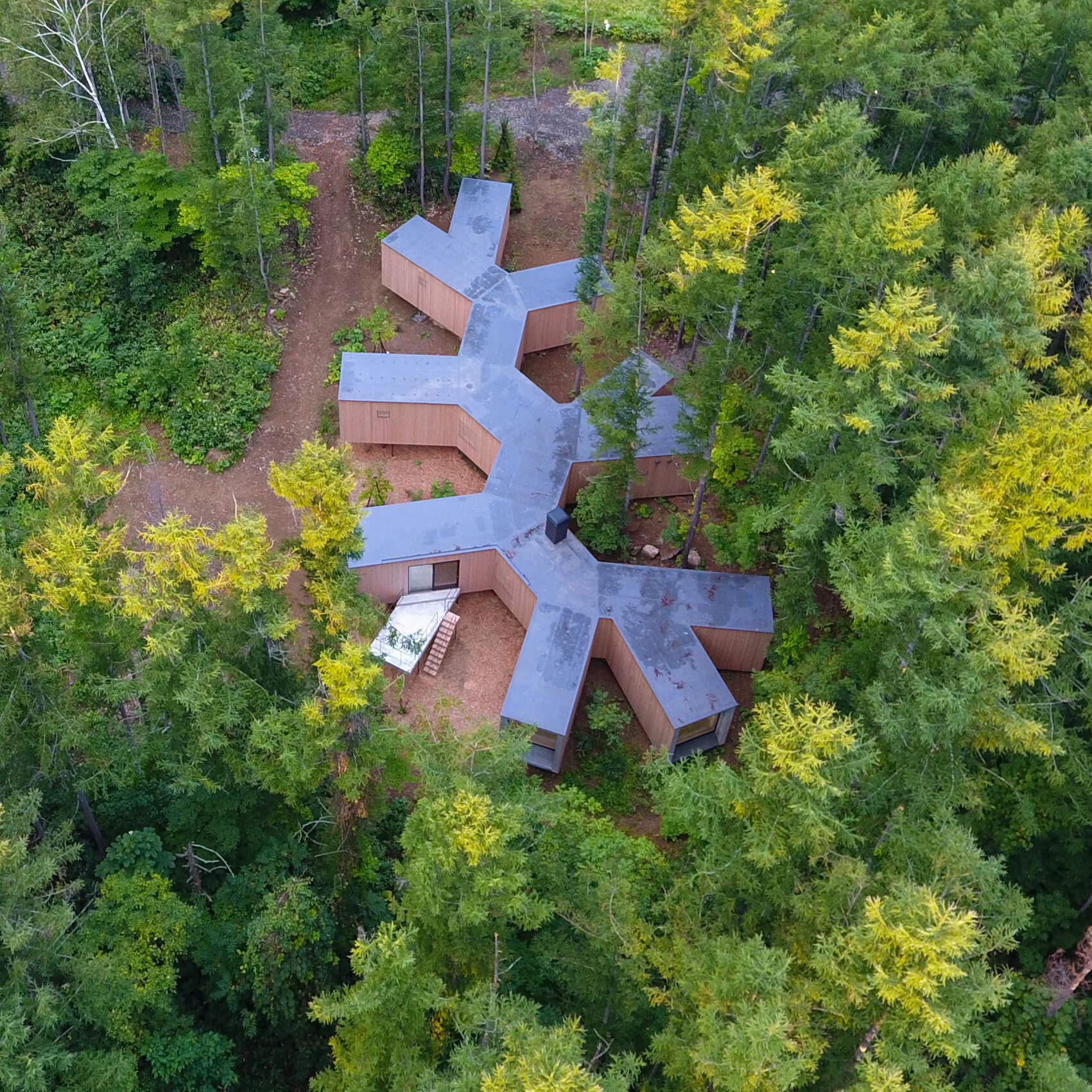 House in the Forest branches out in a faraway forest in Japan | House in the Forest designed by Florian Busch Architects | STIRworld