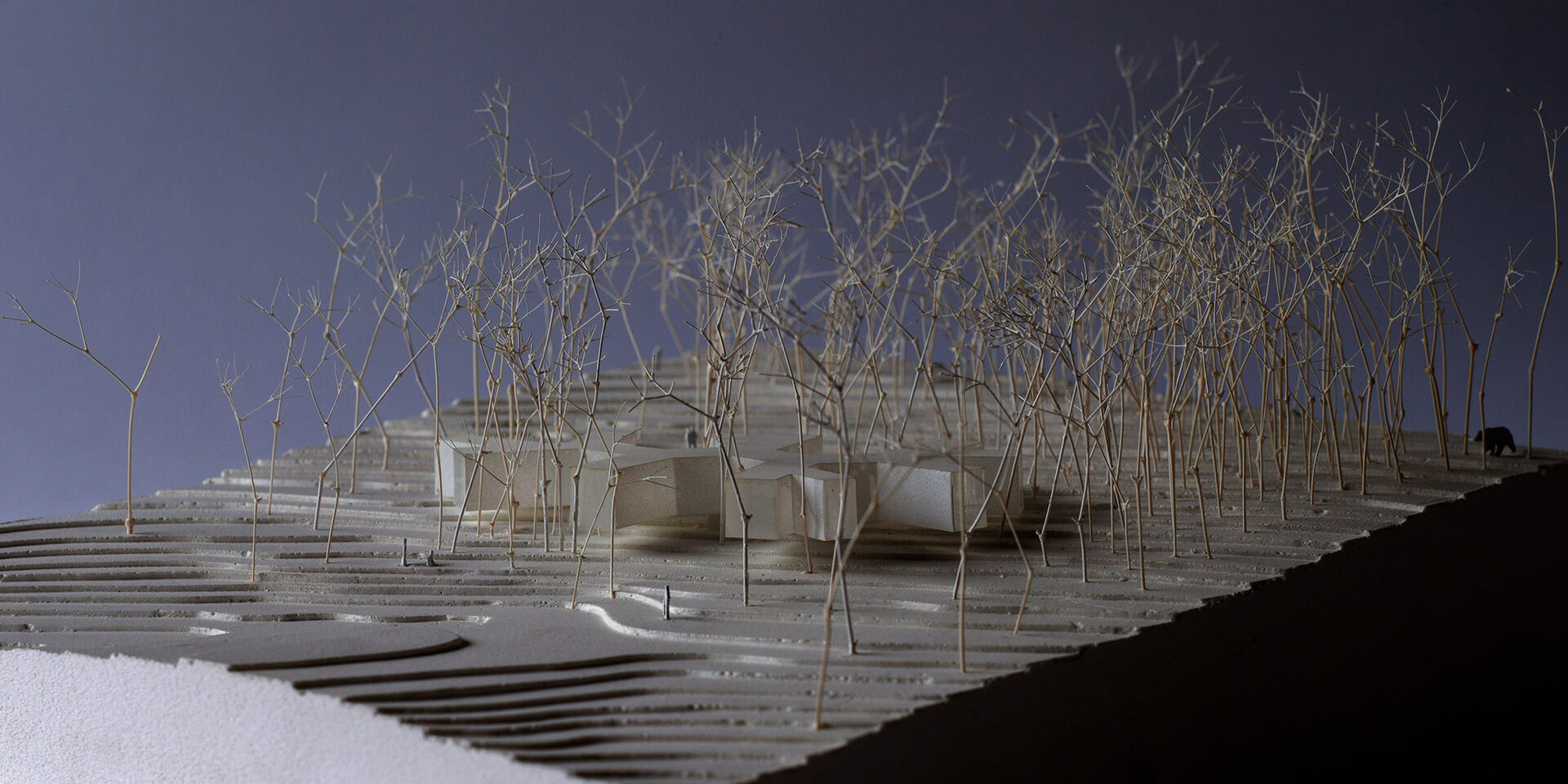 Conceptual model | House in the Forest designed by Florian Busch Architects | STIRworld