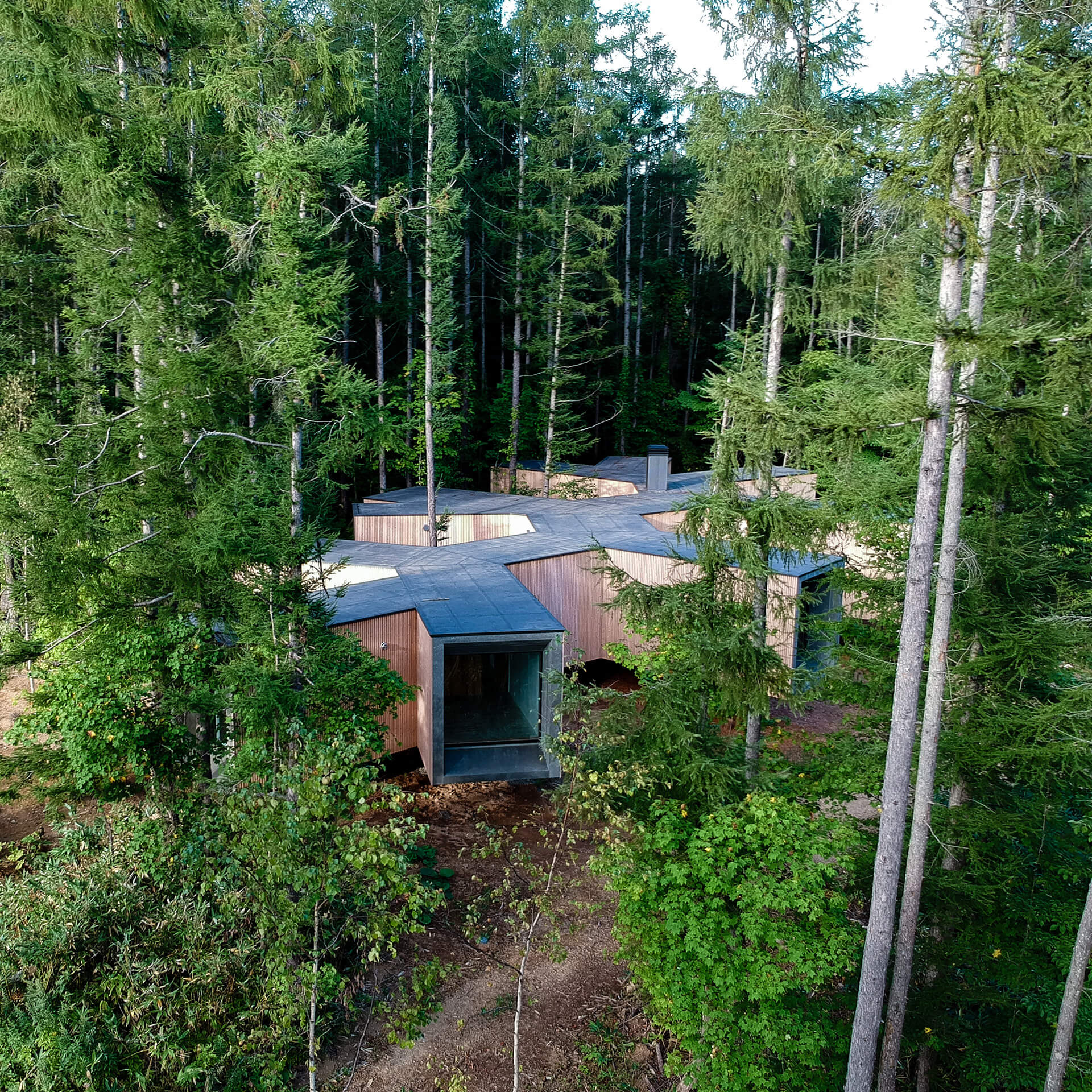 House in the Forest enjoys the natural outdoors | House in the Forest designed by Florian Busch Architects | STIRworld
