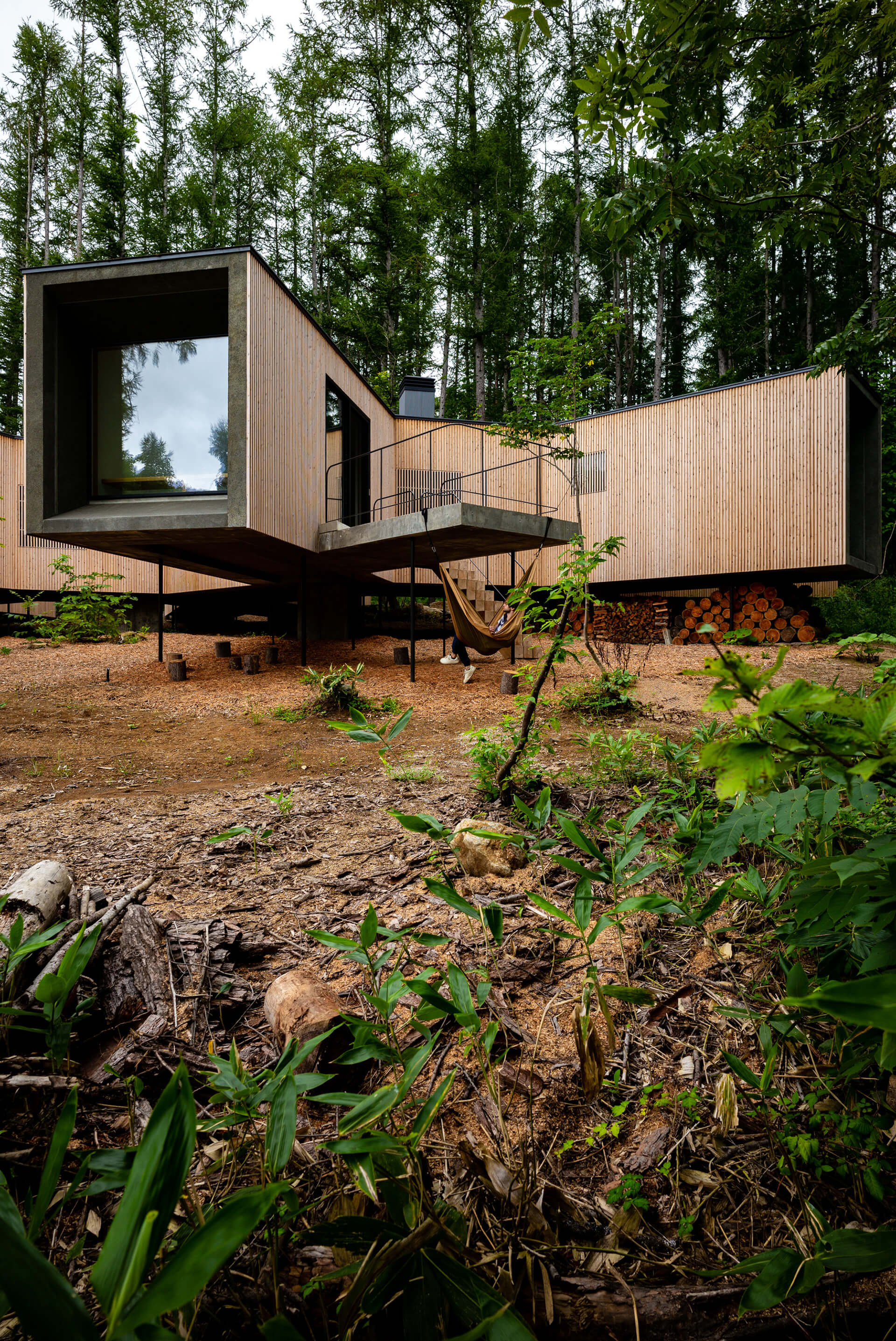 The dwelling's entrance | House in the Forest designed by Florian Busch Architects | STIRworld
