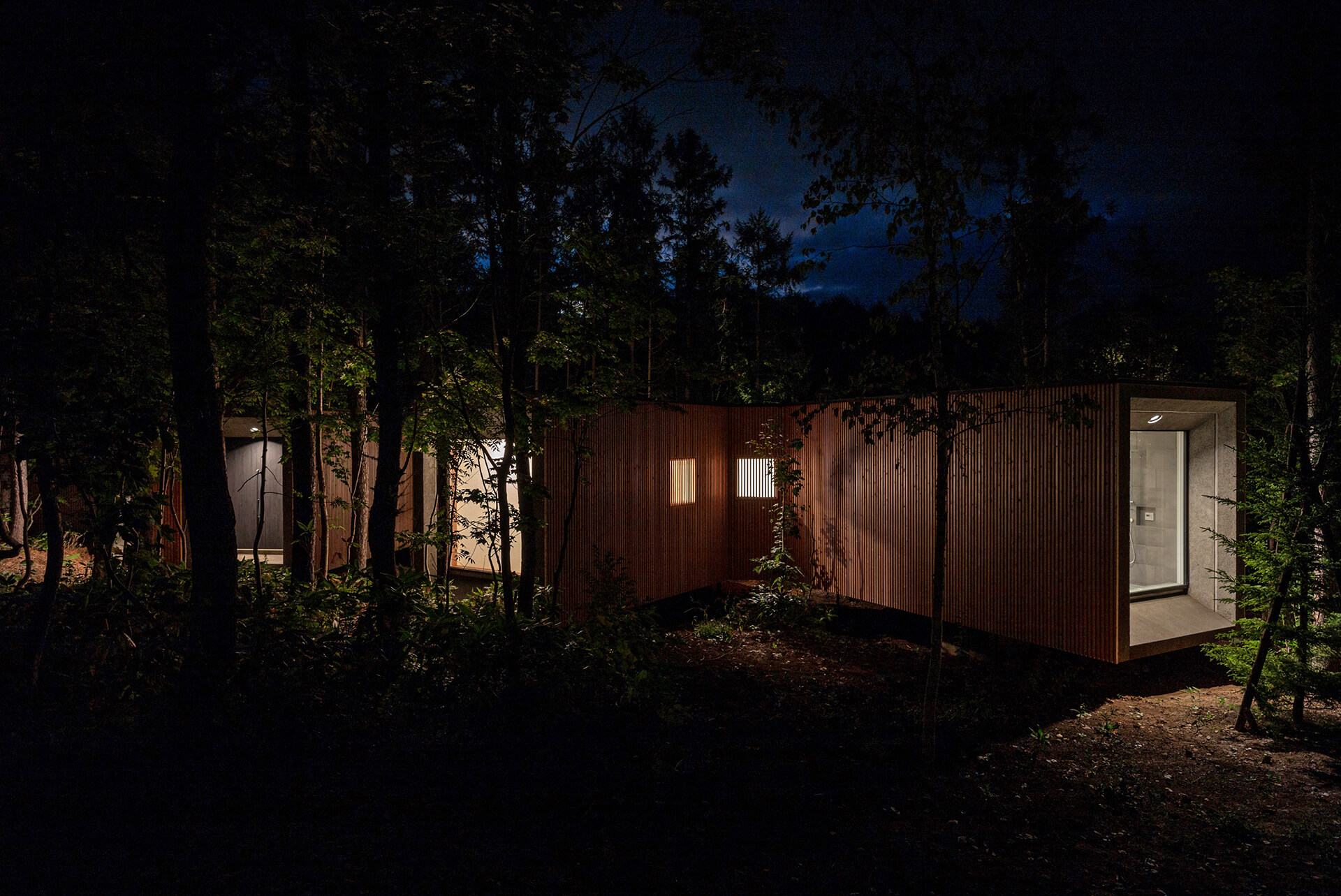 The volume seen at night | House in the Forest designed by Florian Busch Architects | STIRworld