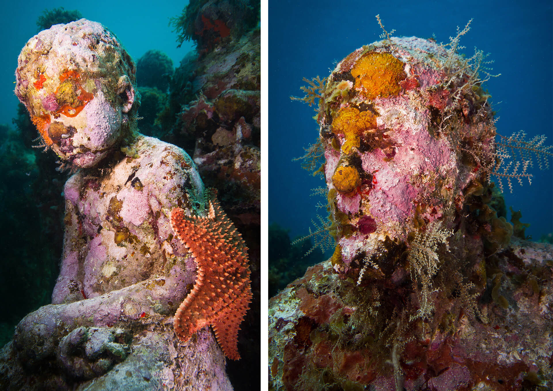 Parts of Silent Evolution by Jason deCaires Taylor, colonised by marine life | STIRworld