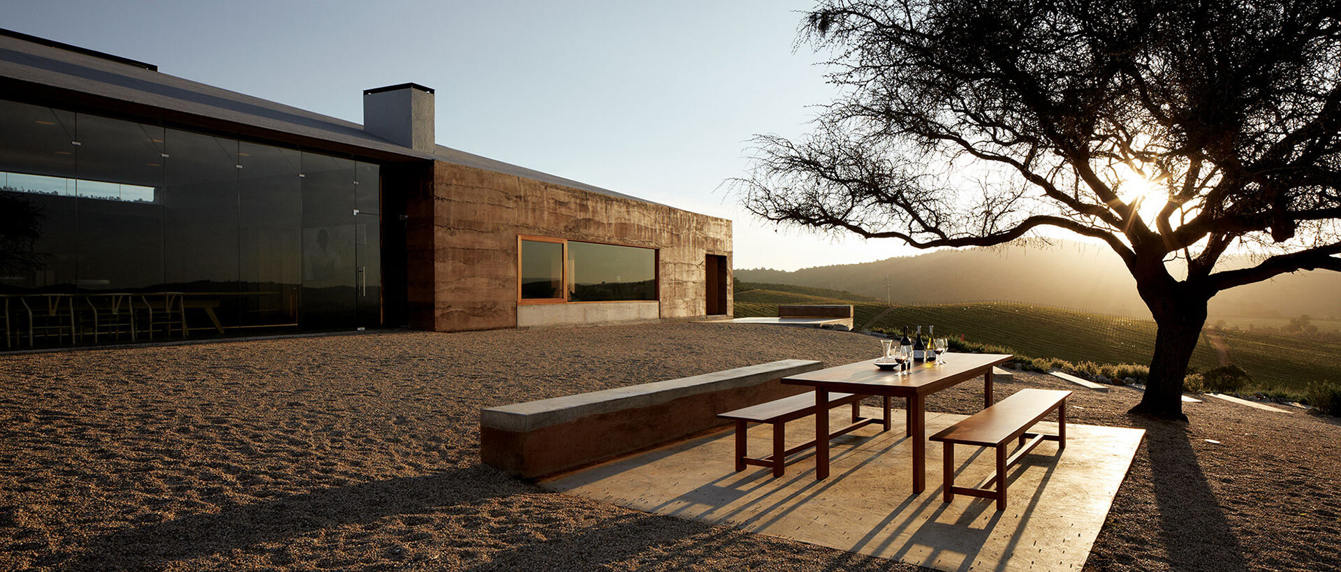 Casa Mirador is crowned by an old twisted mesquite tree | Matías Zegers | STIRworld