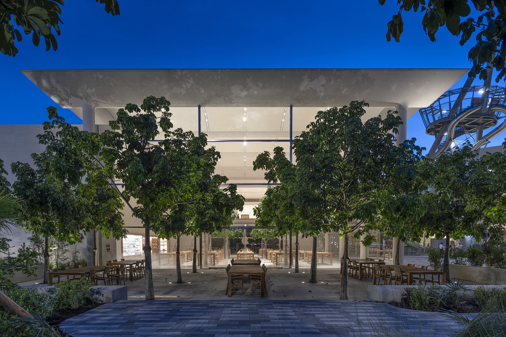 The outdoor Genius Grove (at night)| Apple Aventura | Foster + Partners | STIR