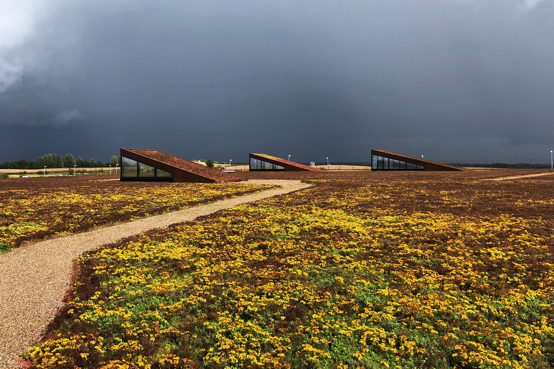 Various skylights dot the green cover that give a view of the facilities below | Solrødgård water treatment park | Henning Larsen | STIR