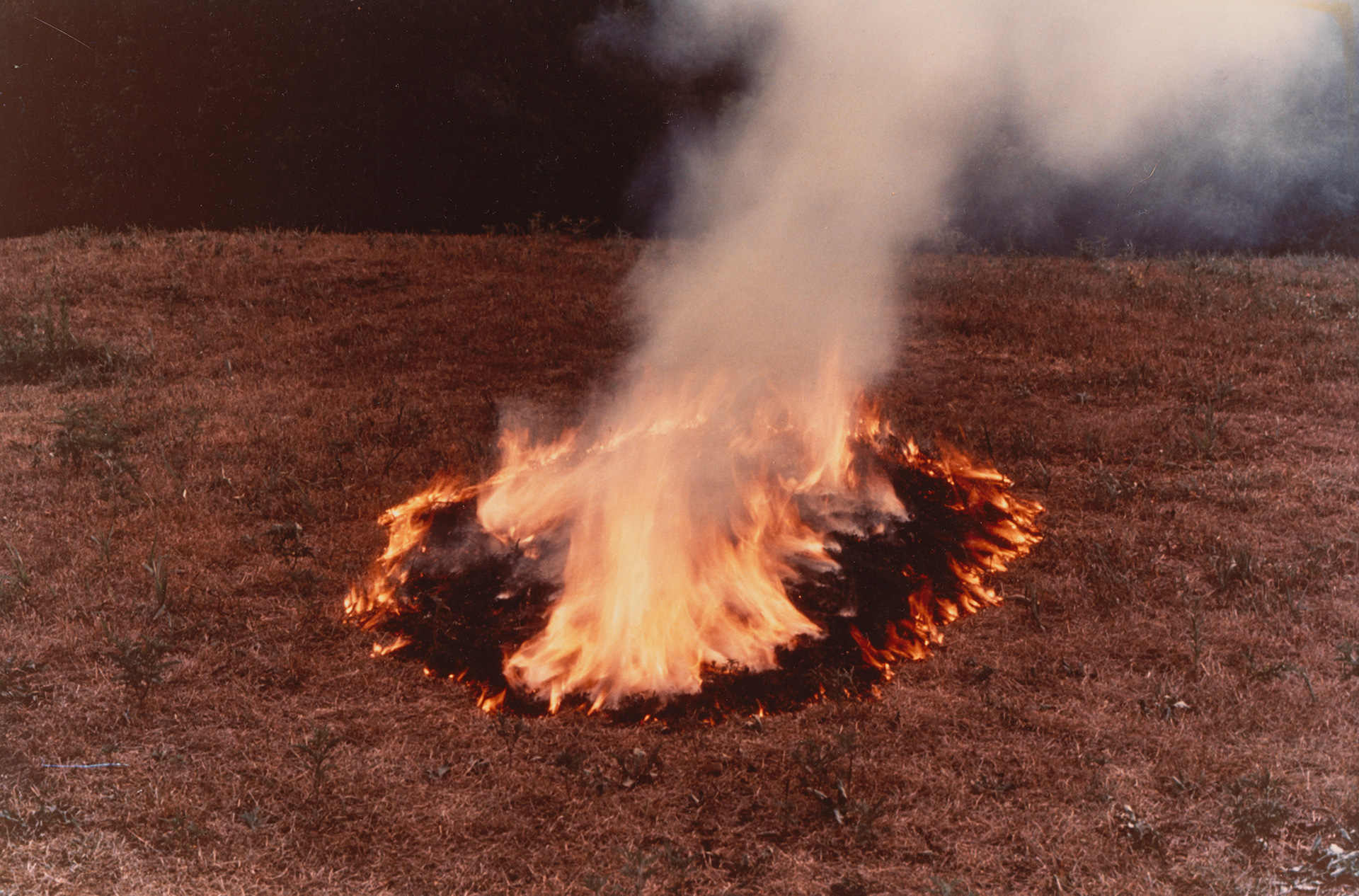 Ana Mendieta, Three Ring Silueta, 1977, colour photograph 13 x 20 inches (33 x 50.8 cm) (GL10794); copyright The Estate of Ana Mendieta Collection, LLC.| Earthbound | Ana Mendieta | STIR