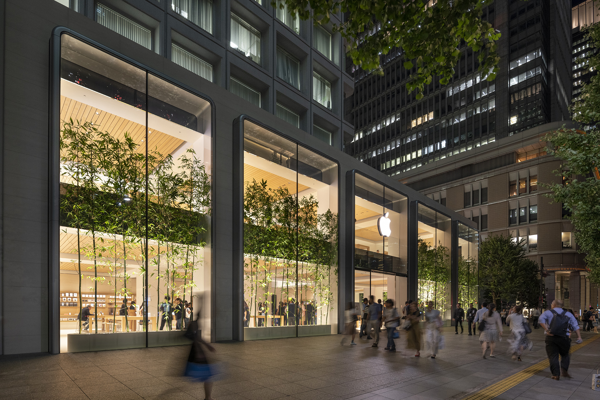 Apple Marunouchi at night | Apple Marunouchi | Foster + Partners | STIR
