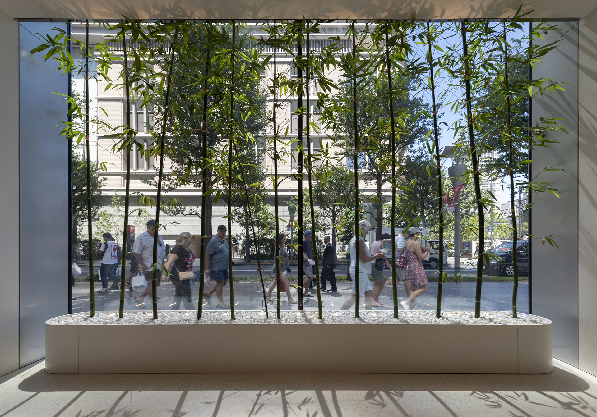 Local bamboo lines the insides of the window openings at the Apple Marunouchi | Apple Marunouchi | Foster + Partners | STIR