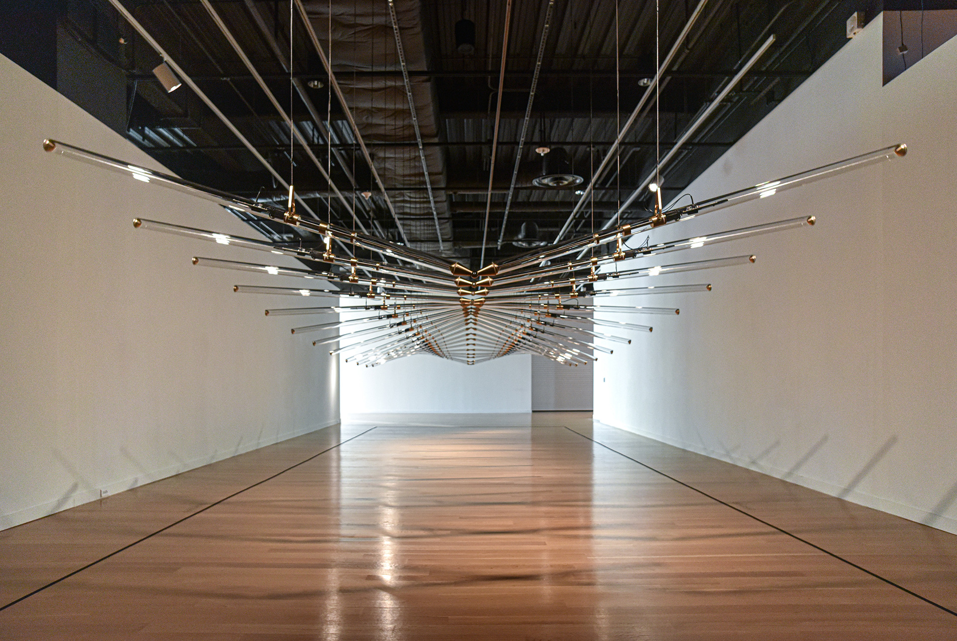Studio Drift. Amplitude, 2017, installation at the Mint Museum, Charlotte, North Carolina | Immersed in Light | Studio Drift | The Mint Museum | STIRworld