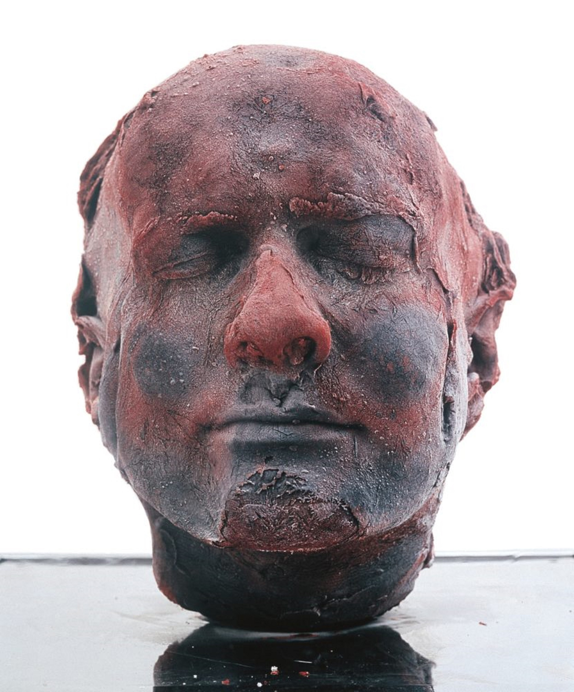 Marc Quinn, Self (1991) | Our Blood | Marc Quinn| STIRworld