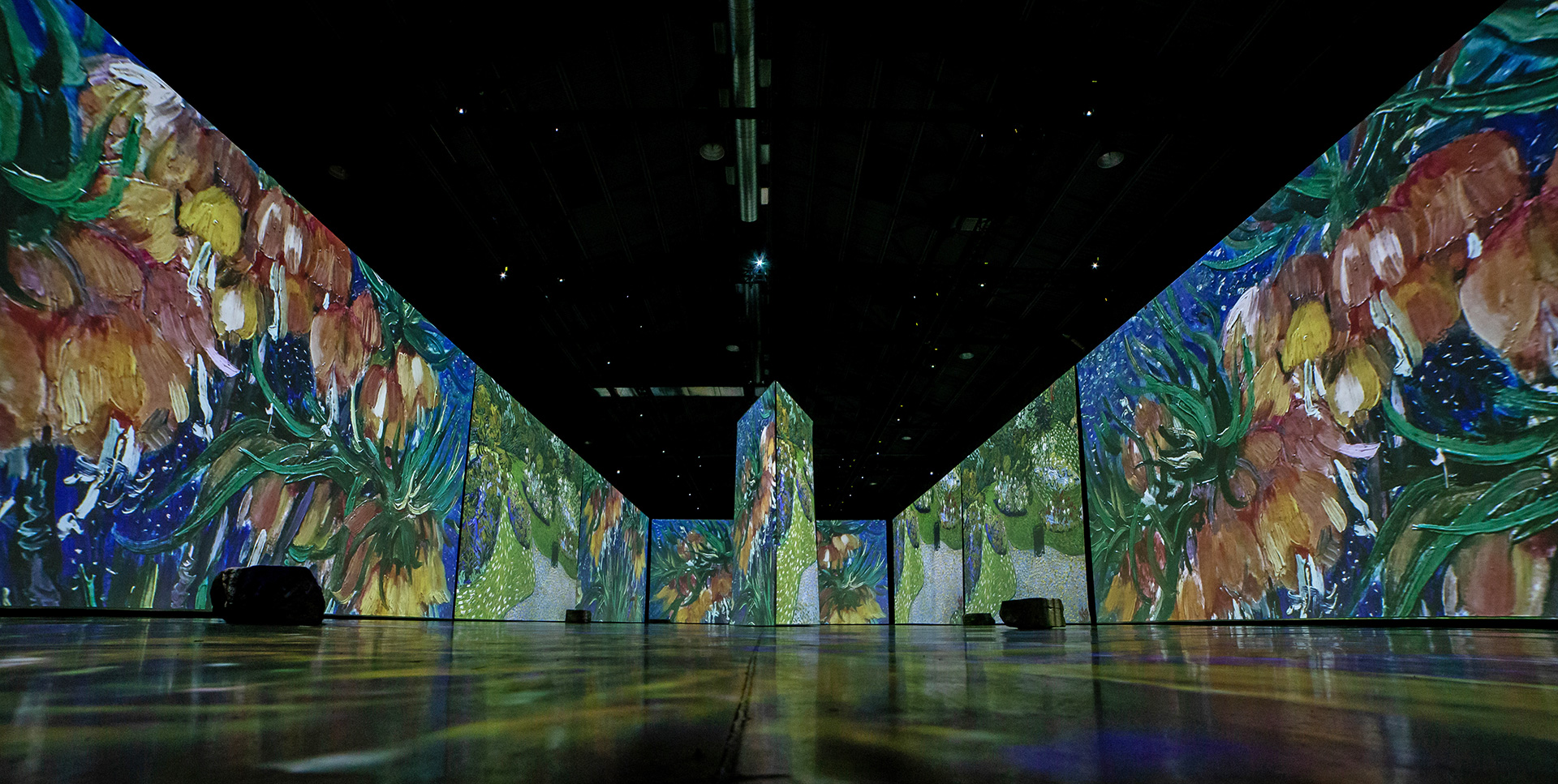 The coming together of visuals and music accentuate the immersive experience | Imagine Van Gogh | STIRworld