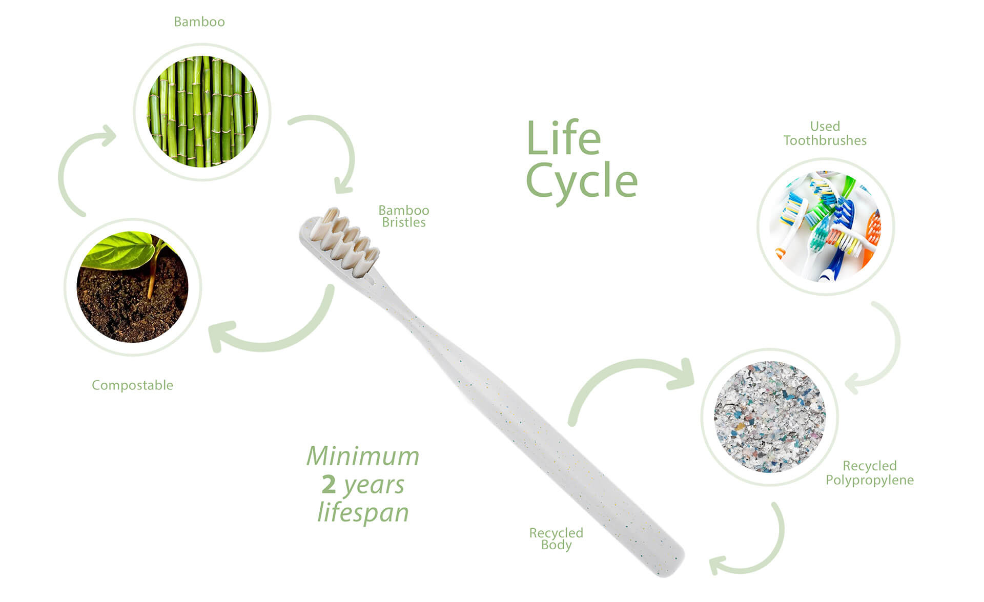 Lifecycle of the toothbrush of the Everloop toothbrush | Everloop Toothbrush | NOS | STIRworld