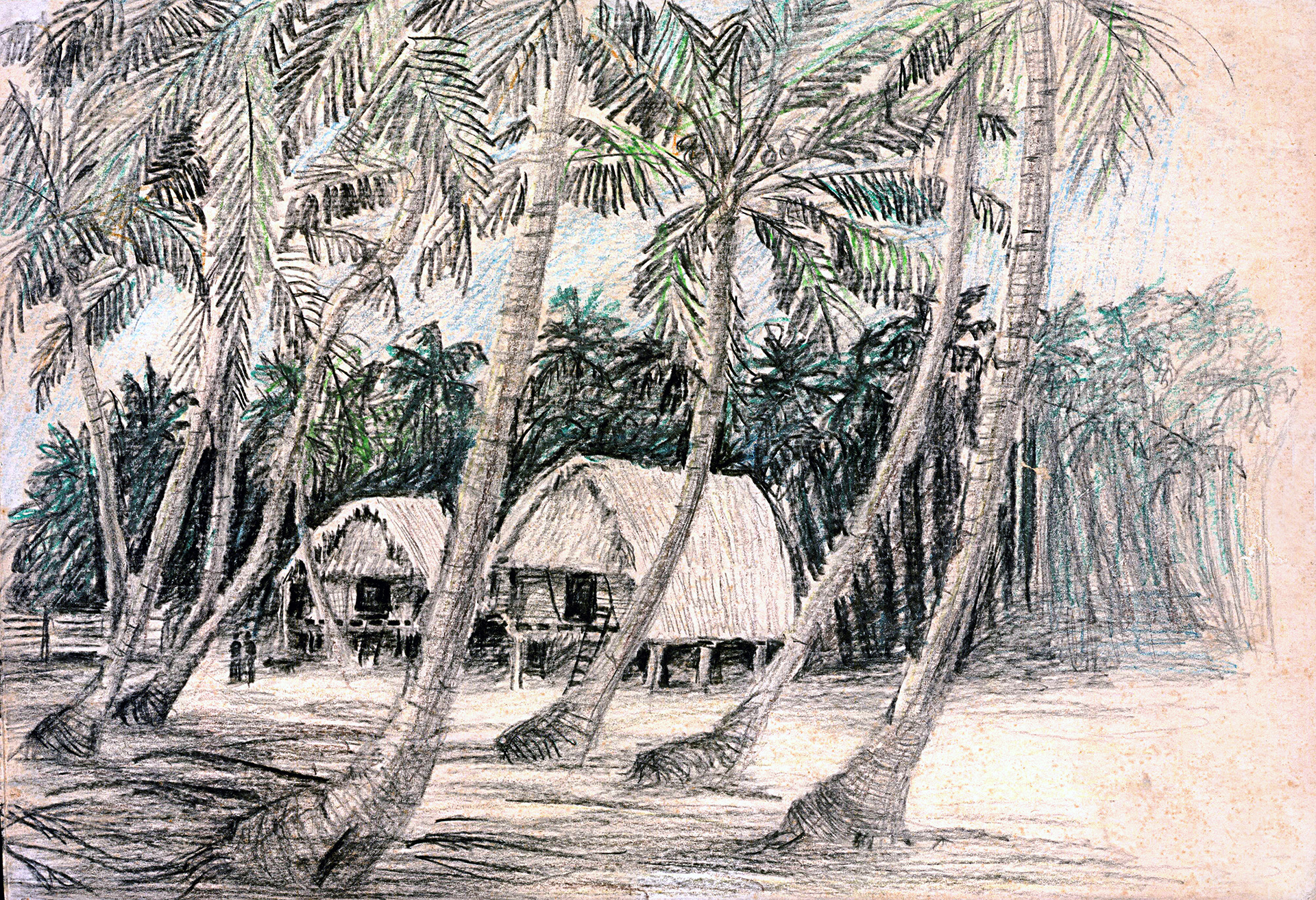 Vernacular architecture in Nicobar Islands | Shirish Beri | STIR