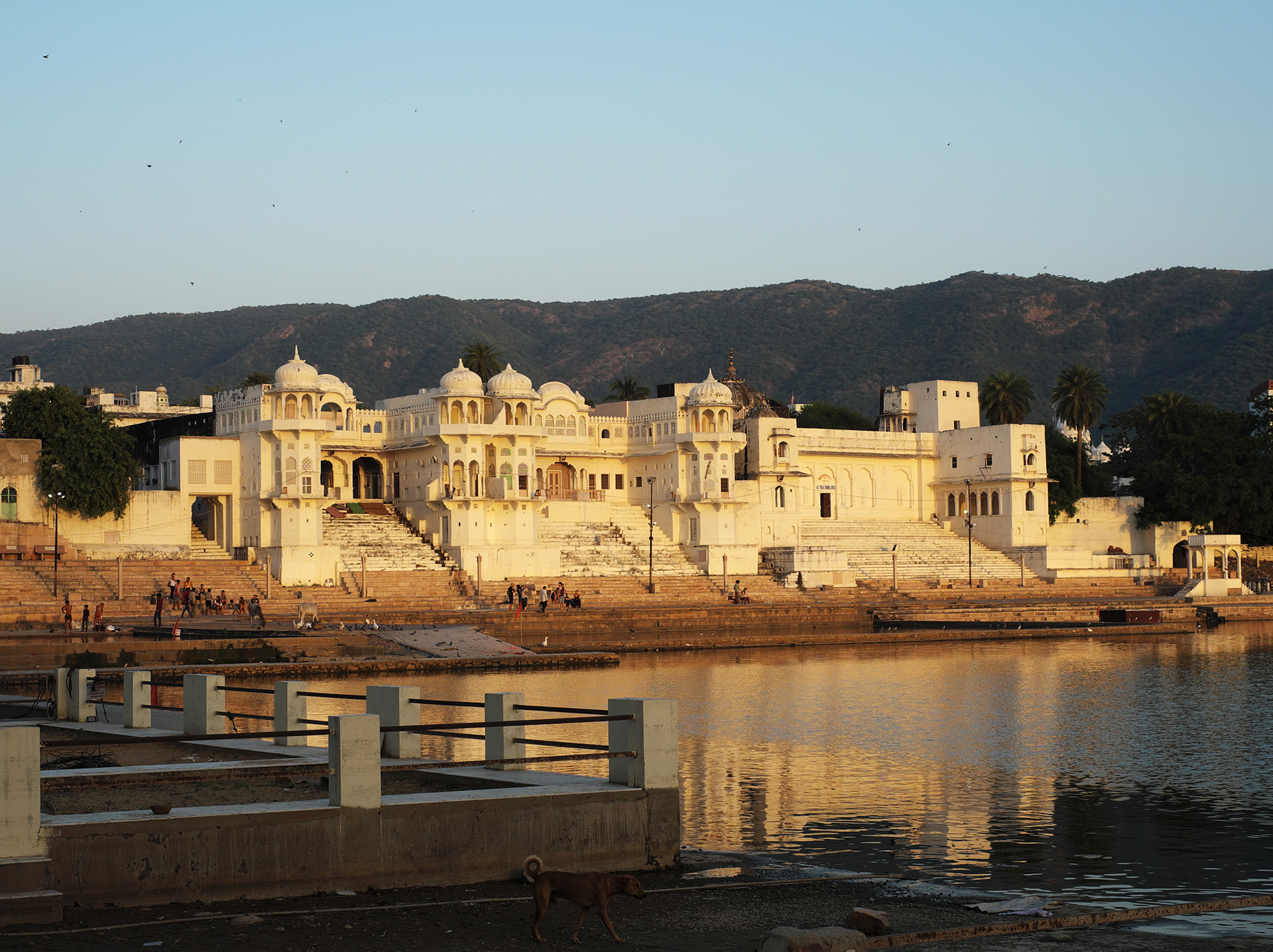 Water edge, Pushkar | Shirish Beri | STIR