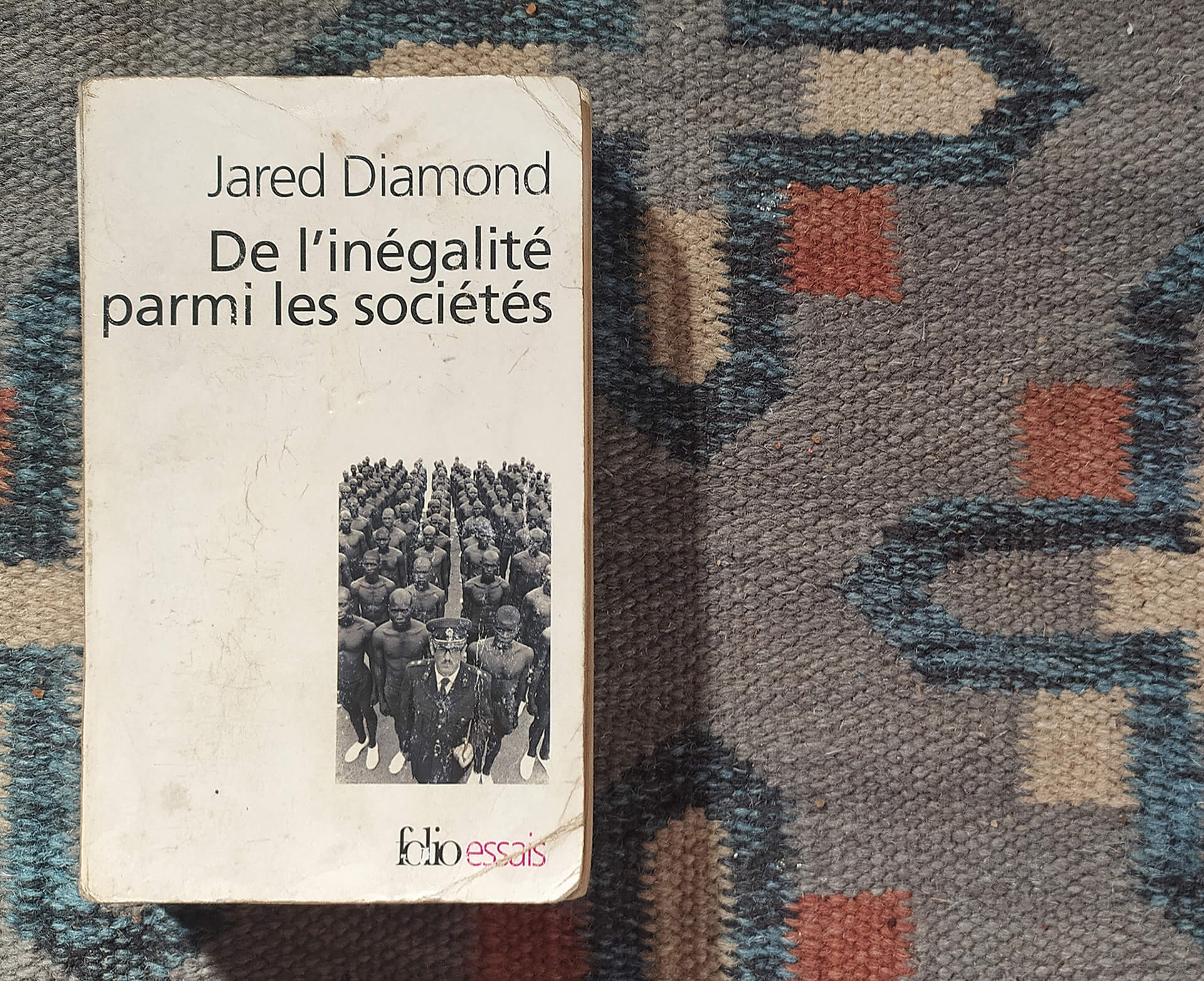 'Guns, Germs and Steel: The Fates of Human Societies' by Jared Diamond | What Am I Reading | Pauline Kerzerho | Guns, Germs and Steel: The Fates of Human Societies | STIRworld